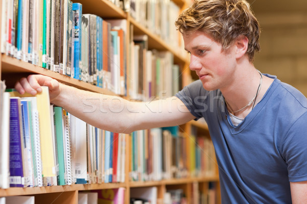 Male student choosing a book in a library Stock photo © wavebreak_media