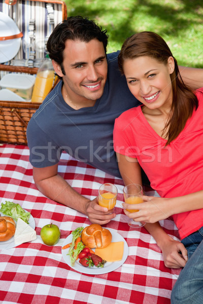 Two smiling friends looking into the sky while they hold glasses as they lie on a blanket with a pic Stock photo © wavebreak_media