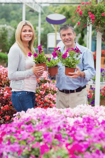 Pár tart lila növények kert centrum Stock fotó © wavebreak_media