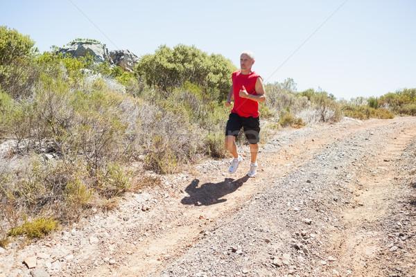 соответствовать человека бег вниз горные тропе Сток-фото © wavebreak_media
