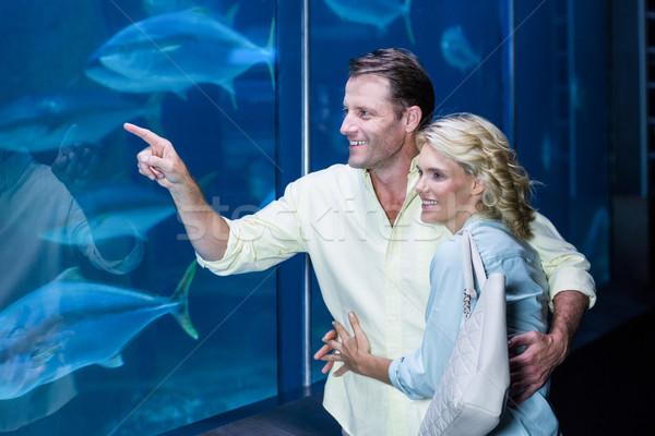 Gelukkig paar wijzend vis tank aquarium Stockfoto © wavebreak_media
