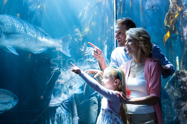 Happy family pointing a fish in the tank  Stock photo © wavebreak_media