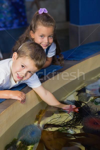 Pequeno irmãos olhando peixe tanque aquário Foto stock © wavebreak_media