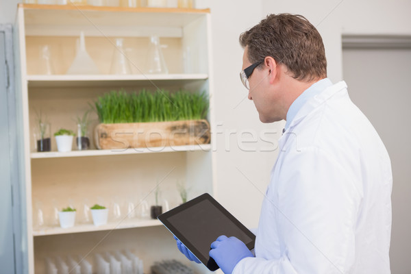 Serious scientist using tablet pc  Stock photo © wavebreak_media