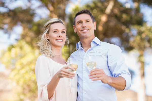 Smiling standing couple enjoying the view and holding wineglass Stock photo © wavebreak_media