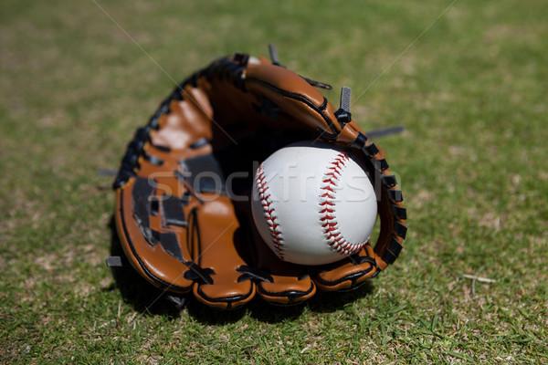 Guanto da baseball campo primo piano erboso cielo legno Foto d'archivio © wavebreak_media