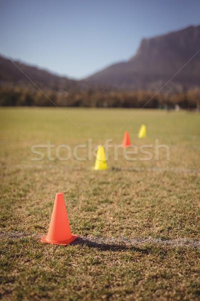 Traffic cone kept on grass Stock photo © wavebreak_media