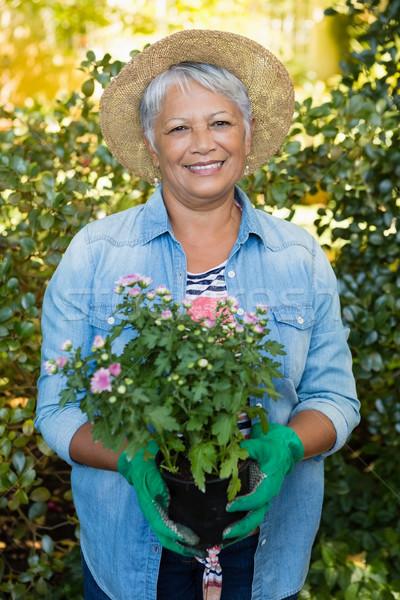 Sorridere senior donna alberello impianto Foto d'archivio © wavebreak_media