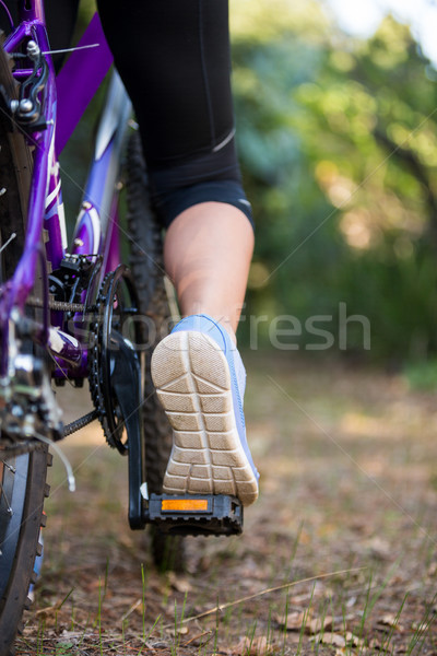Female cyclist cycling in countryside Stock photo © wavebreak_media