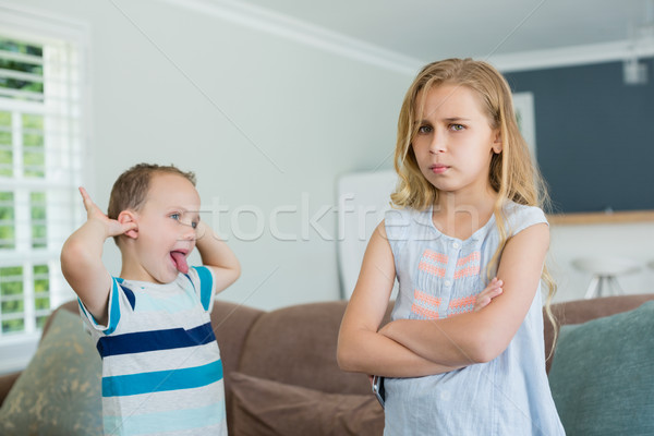 Brother teasing his sister while standing with arms crossed Stock photo © wavebreak_media