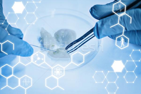 összetett kép tudomány grafikus étel tudós Stock fotó © wavebreak_media