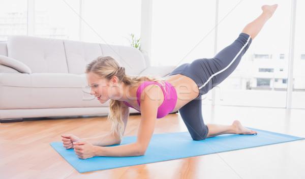 Pilates exercice maison salon santé Photo stock © wavebreak_media
