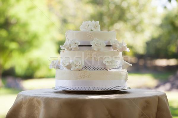 ウェディングケーキ 表 公園 表示 結婚式 ケーキ ストックフォト © wavebreak_media