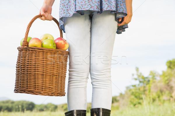 Photo stock: Femme · panier · pommes · nature