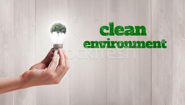 Composite image of hand holding environmental light bulb Stock photo © wavebreak_media