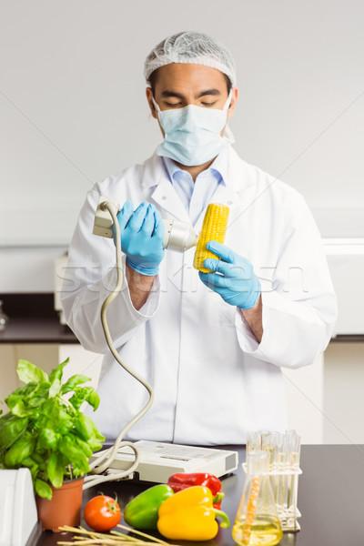 Food scientist using device on corn cob Stock photo © wavebreak_media