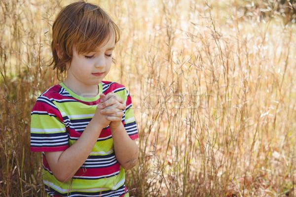 Oração pequeno menino parque criança Foto stock © wavebreak_media