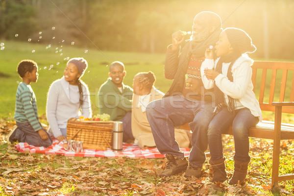 Happy family having a picnic Stock photo © wavebreak_media