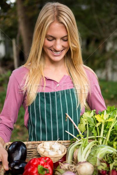 幸せ 植木屋 新鮮な野菜 バスケット 庭園 小さな ストックフォト © wavebreak_media