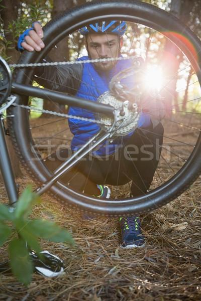 Сток-фото: мужчины · горные · велосипедов · цепь