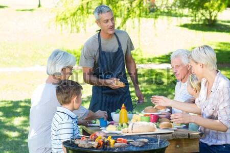 Сток-фото: счастливая · семья · играет · вместе · пикника · улице · небе