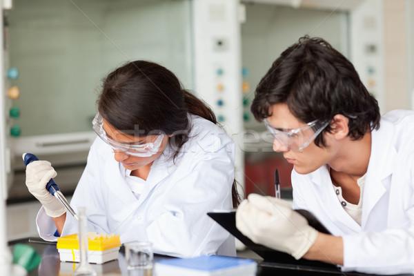 Fókuszált tudósok dolgozik laboratórium mosoly boldog Stock fotó © wavebreak_media