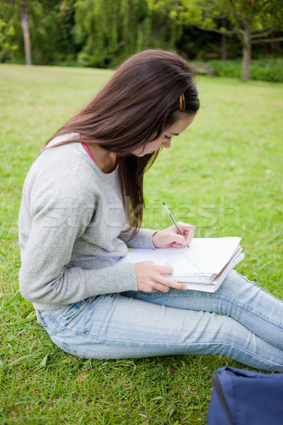 Young serious student sitting in a parkland while doing her homework on a notebook Stock photo © wavebreak_media