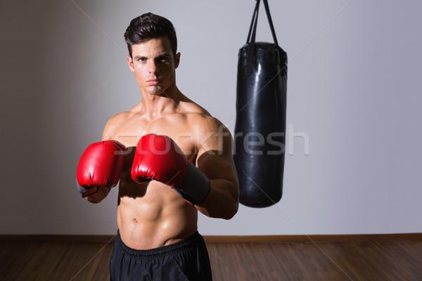 Gömleksiz kas boksör spor salonu portre Stok fotoğraf © wavebreak_media