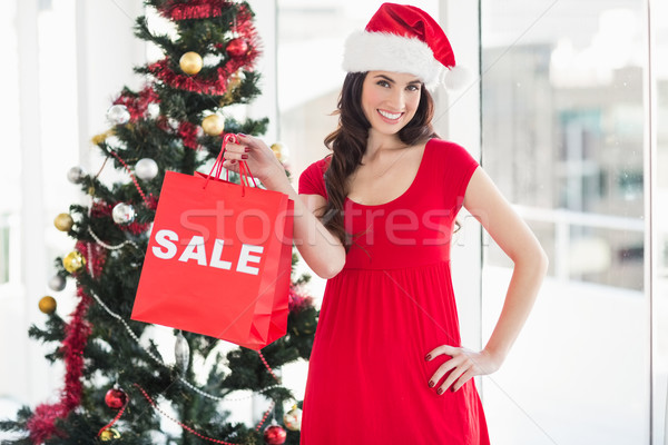 Stylish brunette in red dress showing sale bag at christmas Stock photo © wavebreak_media