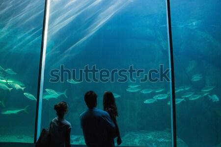 Dziewczynka patrząc ryb zbiornika akwarium ręce Zdjęcia stock © wavebreak_media