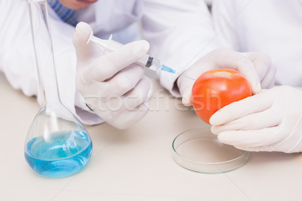 Scientists injecting tomato  Stock photo © wavebreak_media