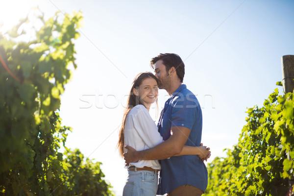 Donna sorridente fidanzato impianti vigneto Foto d'archivio © wavebreak_media