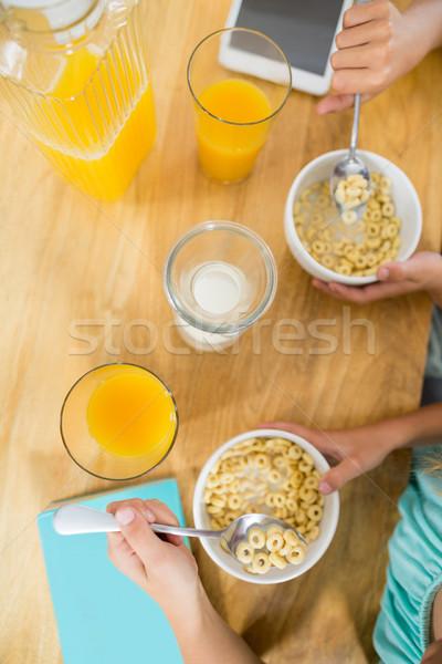 Broer ontbijtgranen keuken home meisje boek Stockfoto © wavebreak_media