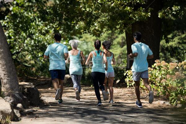 Marathon athlètes marche parc vue arrière femme Photo stock © wavebreak_media