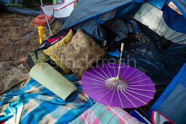 Camping parque árvore retro Foto stock © wavebreak_media