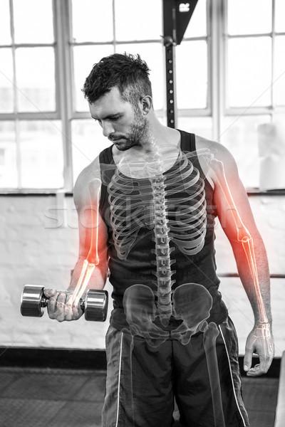 Csontok erős férfi emel súlyok tornaterem Stock fotó © wavebreak_media