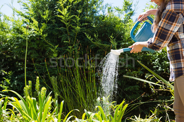 Woman watering plants with watering can in garden Stock photo © wavebreak_media