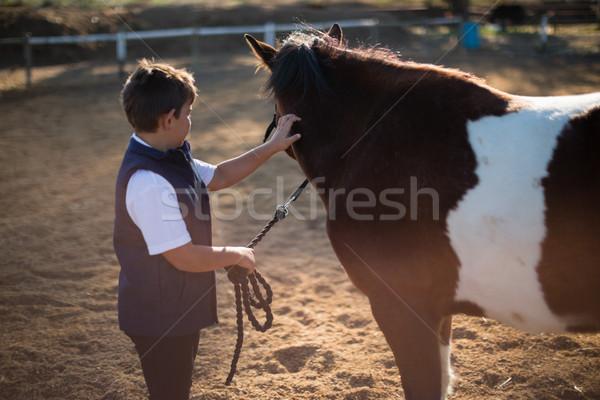 мальчика лошади ранчо лет подготовки Сток-фото © wavebreak_media