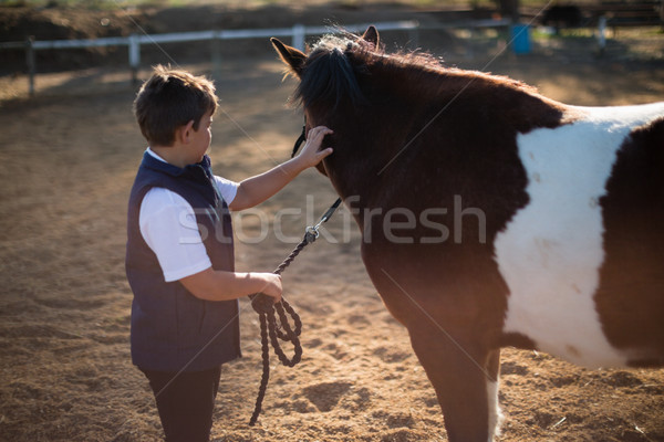 Rider boy caressing a horse in the ranch Stock photo © wavebreak_media