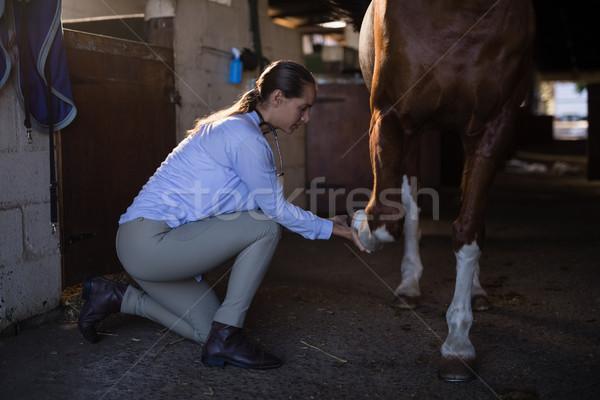 Femenino veterinario examinar caballo pierna estable Foto stock © wavebreak_media
