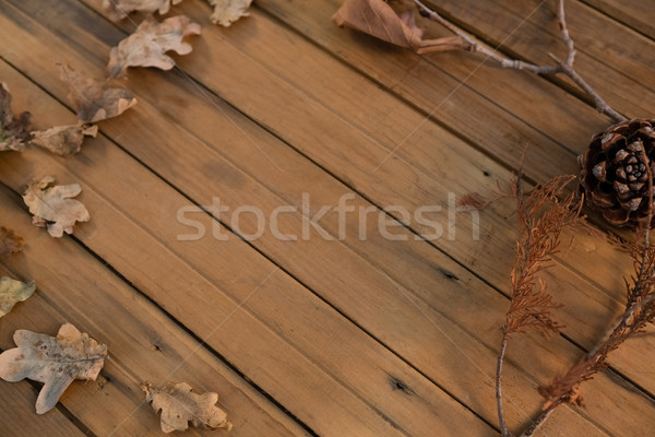 High angle view of pine cone and dried leaves arranged on wooden table Stock photo © wavebreak_media