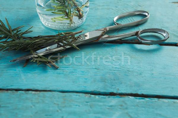Rosemary and scissors on wooden table Stock photo © wavebreak_media