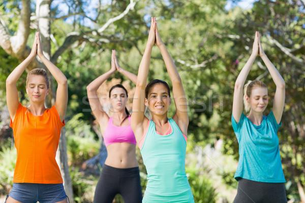 Nők gyakorol jóga park nő nyár Stock fotó © wavebreak_media