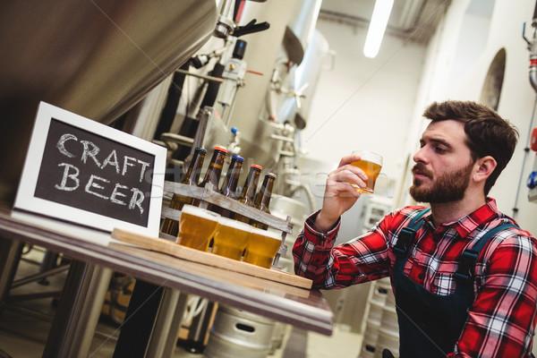 Gyártó megvizsgál sör sörfőzde fiatal férfi Stock fotó © wavebreak_media