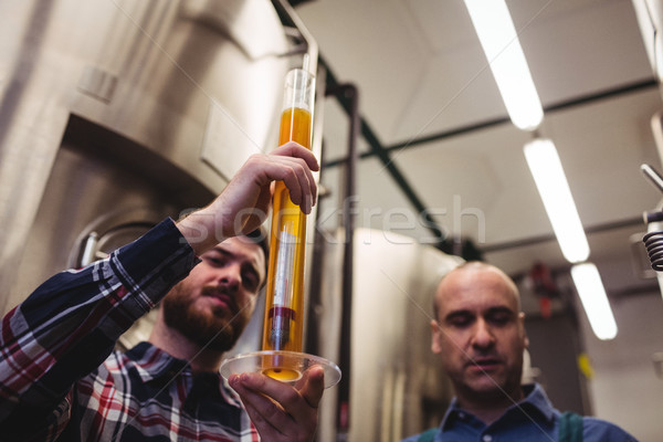 Manufacturer examining beer in tube at brewery Stock photo © wavebreak_media