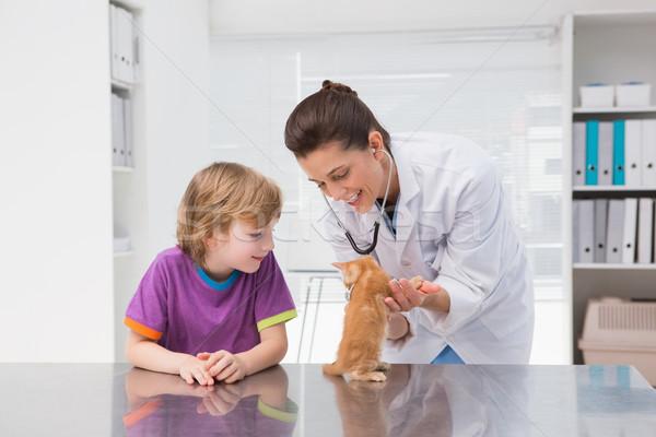 Veteriner kedi sahip tıbbi ofis Stok fotoğraf © wavebreak_media