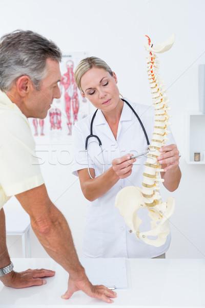 Medico paziente colonna vertebrale modello medici Foto d'archivio © wavebreak_media