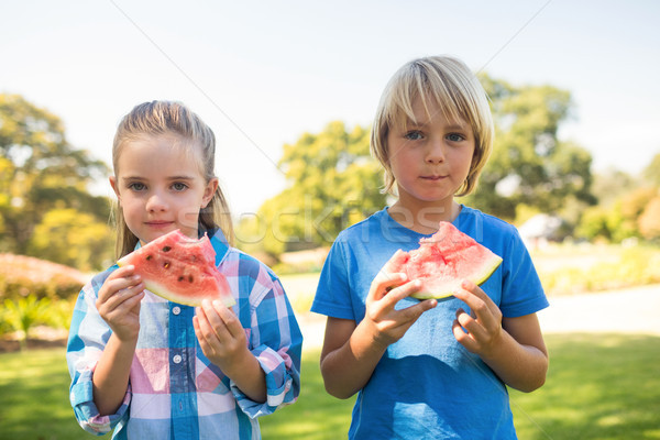 Siblings having watermelon in the park Stock photo © wavebreak_media