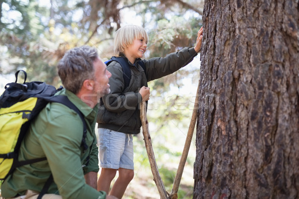 Father and son observing tree trunk in forest Stock photo © wavebreak_media