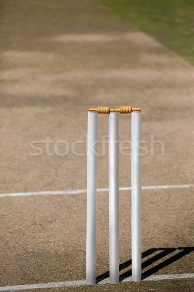 High angle view of white stumps on cricket field Stock photo © wavebreak_media